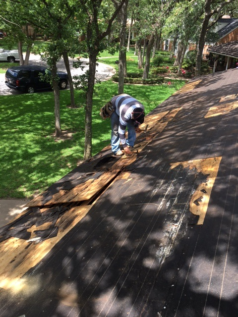 Cedar Hill Interior Renovation And Roof Replacement